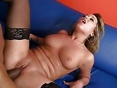 Brunette in sexy lingerie gets her twat licked by black stud