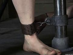 Tormented slave is giving dominant a lusty blowjob