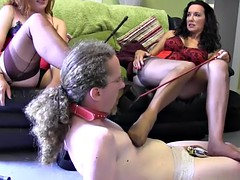 milfs give silky white panties wearing sissy in chasity their sexy nylon stockings feet to worship