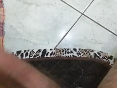 Meu pau