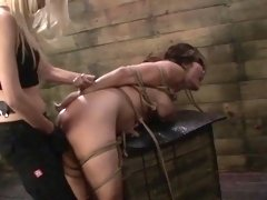Hogtied asian subs clit stimulated by femdoms